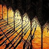 Perturbator: Lustful Sacraments (Digipak) (Audio CD)