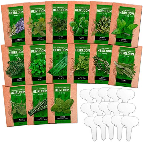 15 Culinary Herb Seed Vault - Heirloom and Non GMO - 4500 Plus Seeds for Planting for Indoor or Outdoor Herbs Garden, Basil, Cilantro, Parsley, Chives, Lavender, Dill, Marjoram, Mint, Rosemary, Thyme