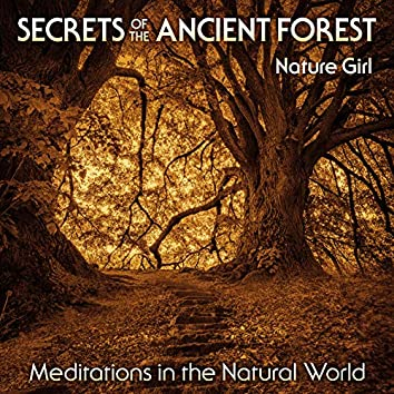 Secrets of the Ancient Forest (Meditations in the Natural World)