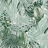 |Papier peint feuille de palmier vert |Palm Leaves Papier peint |Coller le papier peint mural |