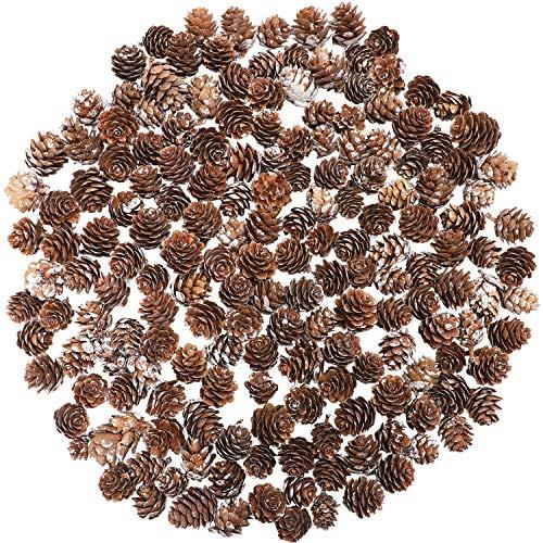 Cooraby 130 Stück Mikro-Mini-Schnee-Tannenzapfen Weihnachten Schnee Tannenzapfen Ornamente für Heimdekoration, Herbst und Weihnachten Handwerk