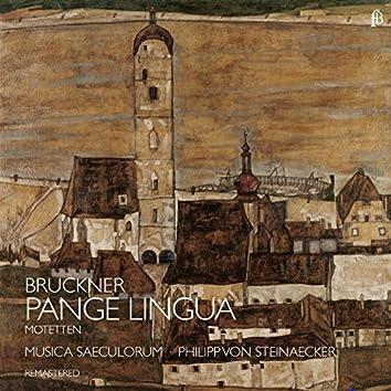 """Bruckner """"Pange Lingua"""" (Remastered)"""