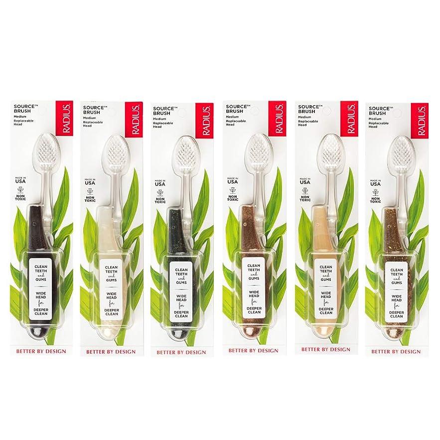 激しいスロット第五海外直送品Source Toothbrush, Medium, 1 Ct by Radius Toothbrushes