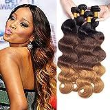 Dayrise hair 9A grade ombre human hair bundles brazilian virgin hair body wave three tone T1b/4/30 black to brown hair bundles (10 12 14)
