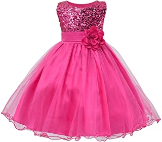 Wiwsi Girl Kids Sleeveless Wedding Bridesmaid Formal Party Princess Flower Dress