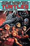 Teenage Mutant Ninja Turtles Volume 16: Chasing Phantoms