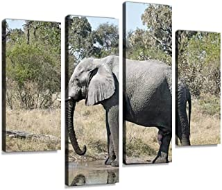 African Elephant Bull at waterhole; Moremi NP, Botswana Canvas Print Artwork Wall Art Pictures Framed Digital Print Abstra...