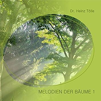 Melodien der Bäume 1
