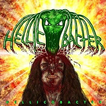 Hellicobacter