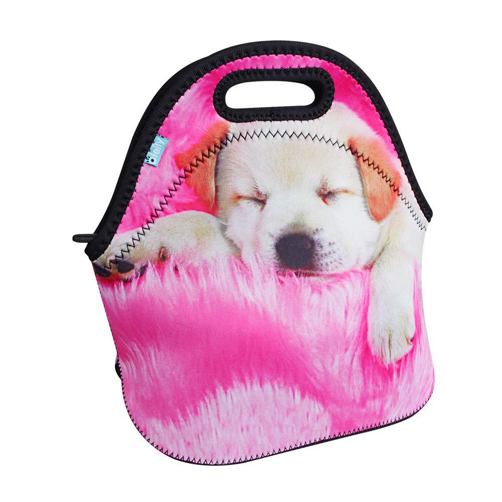 Dog Sleeping Bag Pattern Free Patterns