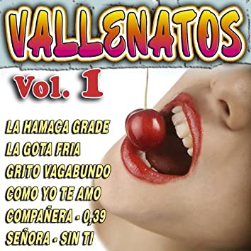 Vallenatos Vol.1
