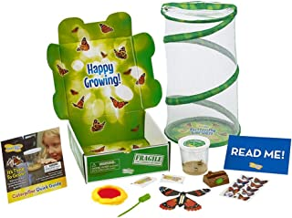 Insect Lore Live Butterfly Garden Gift Set