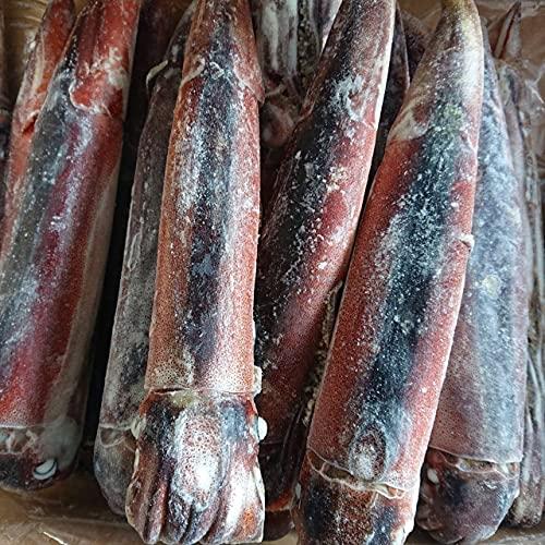 産直丸魚  青森八戸産 船凍スルメイカ 生食用3kg入     真いか するめいか イカ いか