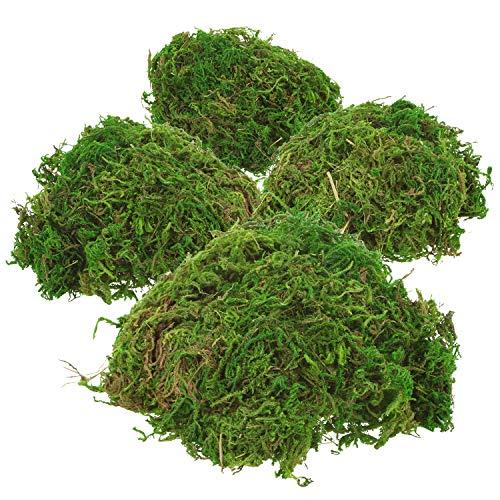 com-four® 4X grünes DIY Bastel-Moos - echtes Deko-Moos zum Basteln und Dekorieren - ca. 25 g je Beutel (Set2 - Dekomoos - 4X)