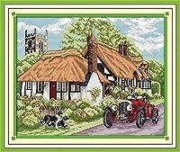 大人のための刻印されたクロスステッチキット初心者絶妙なホームプレプリント用品フルレンジ5DDIYニードルポイント手工芸品子供の家の装飾40X50CM11CT