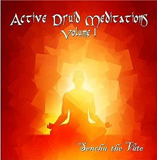 druid meditation