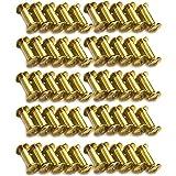 Xinlie 50 PCS Tornillo de Cuero de Encuadernación Tornillo de Chicago Acero Niquelado Remache Cabeza de Cruz Redondo Botones Clavo Perno del boton macizo de arco Clavos de Tornillo M5x10mm (B)