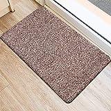 BEAU JARDIN Indoor Super Absorbs Mud Doormat 36'x24' Latex Backing Non Slip Door Mat for Front Door...