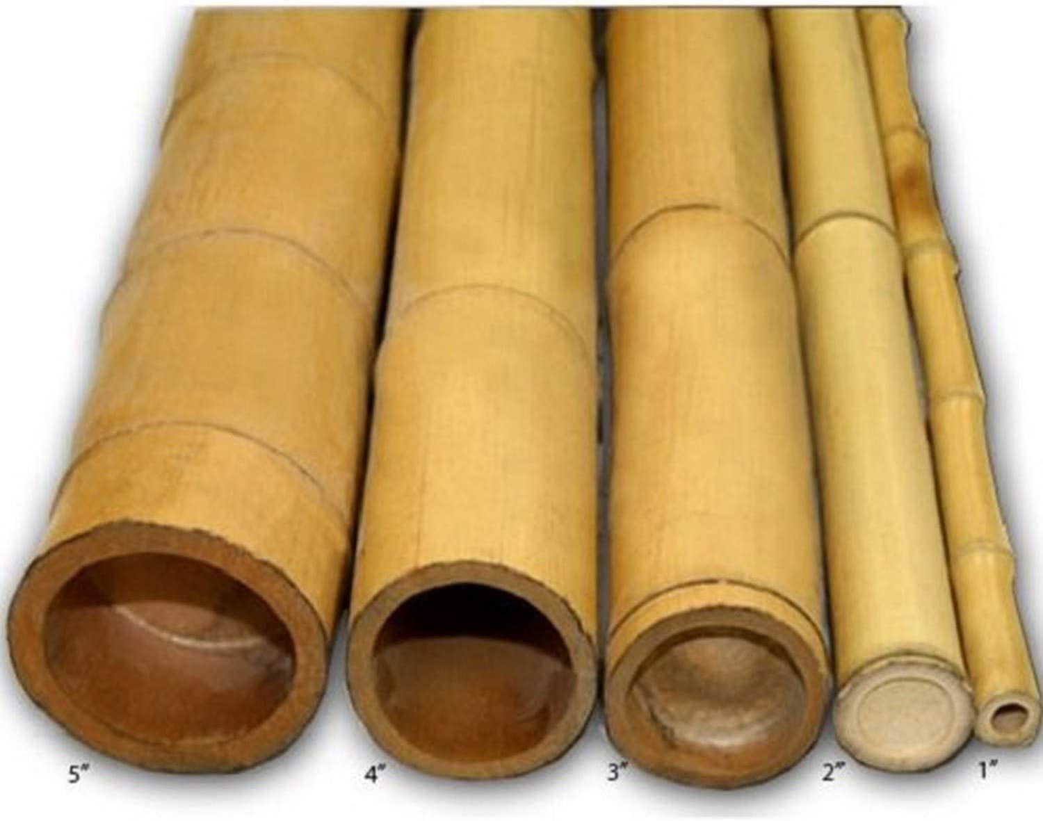 Amazon.com  Backyard X scapes Natural Bamboo Poles 20in x 20ft ...