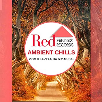 Ambient Chills - 2019 Therapeutic Spa Music