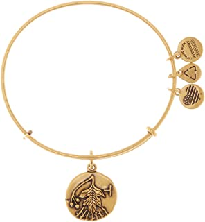 Alex and Ani Hawthorn 魅力手鐲 Rafaelian 金色拋光手鐲,A15EB37RG