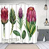 MAYUES Cortina de Ducha Impermeable Flor Protea Set Acuarela Planta Tropical Cortinas baño con Ganchos Lavable a Máquina 72x72 Inch