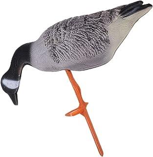 25640a0ed0 Amazon.it: Canada Goose