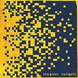 Marigold [Vinilo]