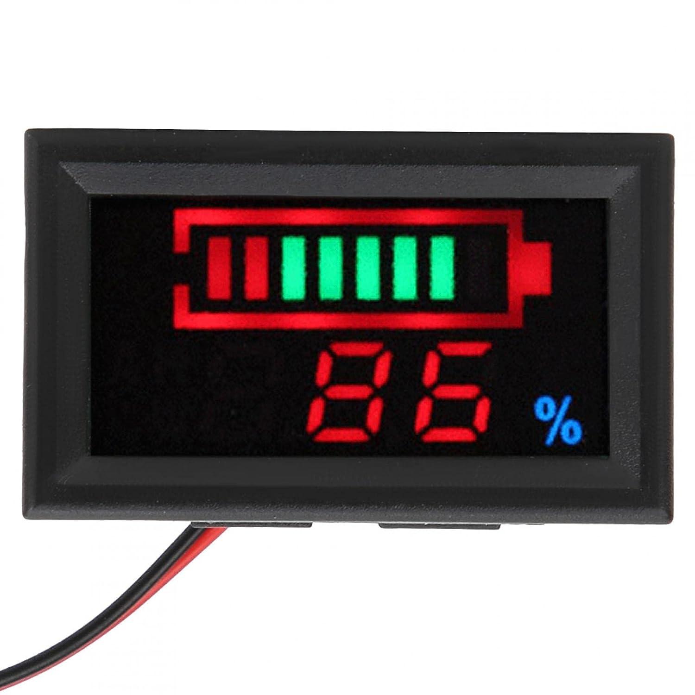 Digital LED Battery(48V, Lithium Battery)