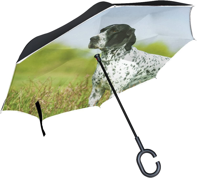 Animal Dog Pointer Blackandwhite Mix Pet Fluffy Animated Real Ingreened Umbrella Large Double Layer Outdoor Rain Sun Car Reversible Umbrella
