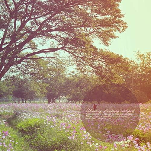 Landscape Sound