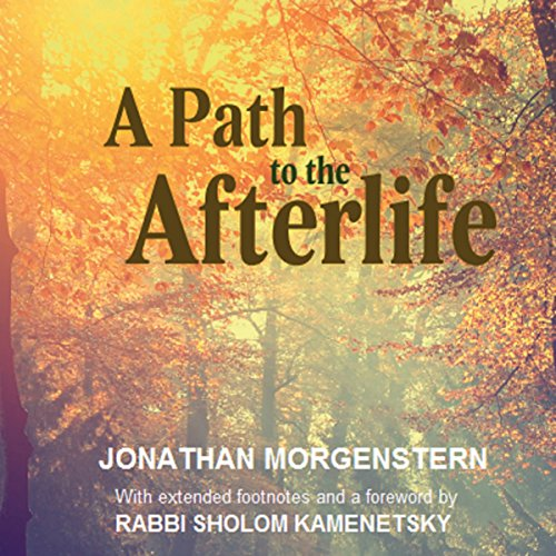 A Path to the Afterlife audiobook cover art
