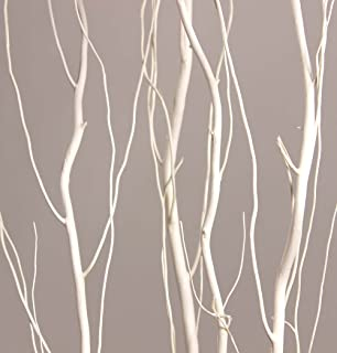Green Floral Crafts | 4-5 Ft Tall | Curly Willow | Bleached White | Pack of 10 Stems