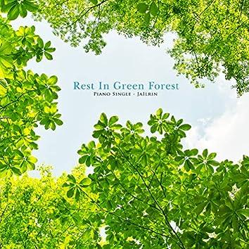 푸른 숲에서의 휴식
