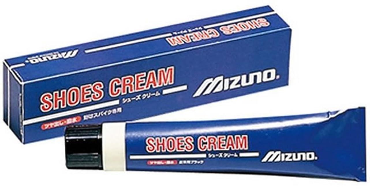 強い市の中心部強調するMIZUNO(ミズノ) 野球 シューズ用 靴クリーム チューブタイプ 50g 2ZK827091P