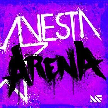 Arena (Original Mix)