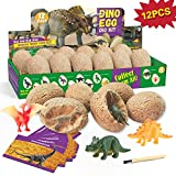 Dr. Daz Kit di scavo per Uova di Dinosauro - Include 12 Uova e Figure + 12 Carte educative - Kit per Scavare Le Uova di Dinosauro - Dinosaur Toy