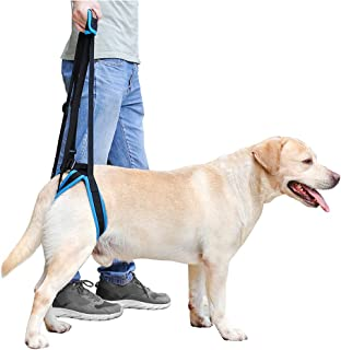 Petsidea Dog Rear Leg Lift Harness Support Help Old Dogs for Hip dysplasia, Rehabilitation, Joint Injuries