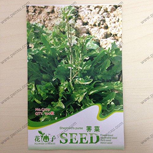 Originalverpackung Gemüsesamen, Hirtentäschel Samen reifen Blüten 60 Tagen 100 Teilchen Samen / bag