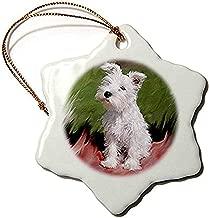 Diuangfoong White Schnauzer Snowflake Porcelain Ornament, 3-Inch