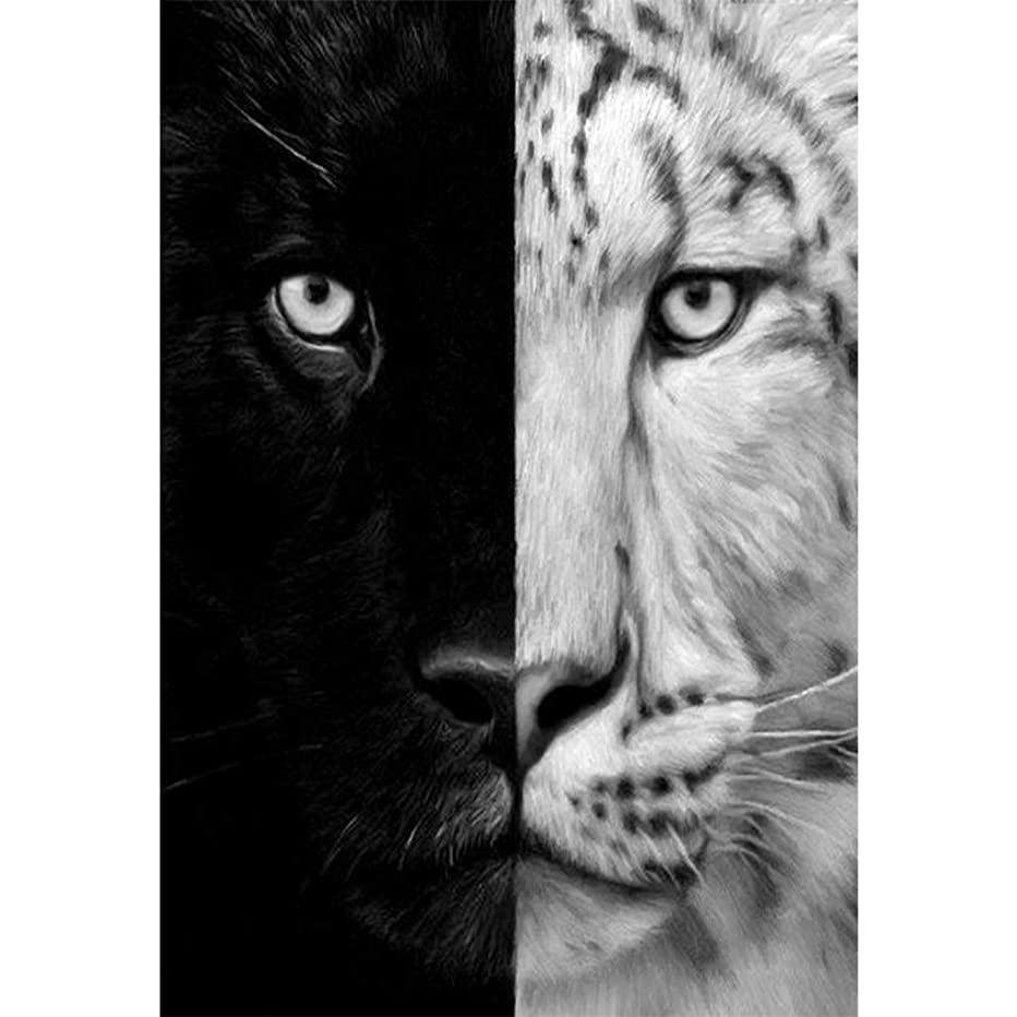5D Diamond Painting Full Drill Diamond Art Kits for Adults Black White Tiger DIY Diamonds Embroidery for Wall Decor (11.8X15.7inch)