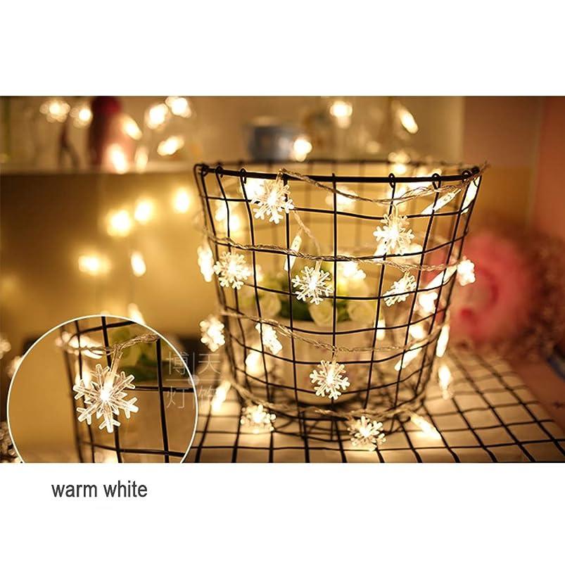 メインセント信頼できる電池式 ストリングライト - 防雨型 2 スノーフレークLEDイルミネ ーションライト ロマンチックな雰囲気を作る屋外用 ワイヤーライト イルミネーションライト、庭、パティオ、バルコニ、ークリスマス