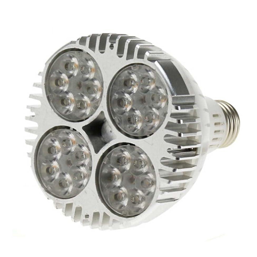 LEDHOLYT 35W(75w Equivalent) PAR30 24pcs LEDs Warm White SpotLight Bulb E26 Project Tracking Light 15 Degree Beam Angle