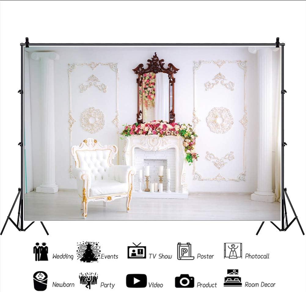 Haoyiyi 9x6ft Class Interior Luxury Indoor Empty Room Baroque Backdrop Elegant White European Palace Fireplace Background Photography Lover Brider Shower Wedding Cowboy Birthday Photo Booth Prop
