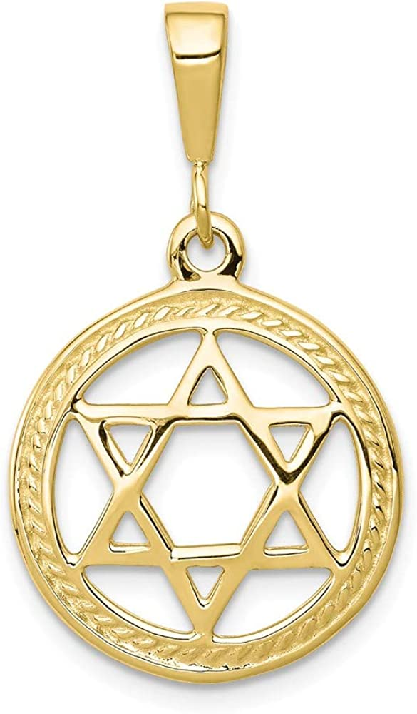 Solid 10k Yellow Gold Star of David Lucky Jewish Charm Pendant - 30mm x 19mm
