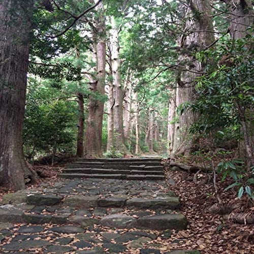 Takamitsu Muraji
