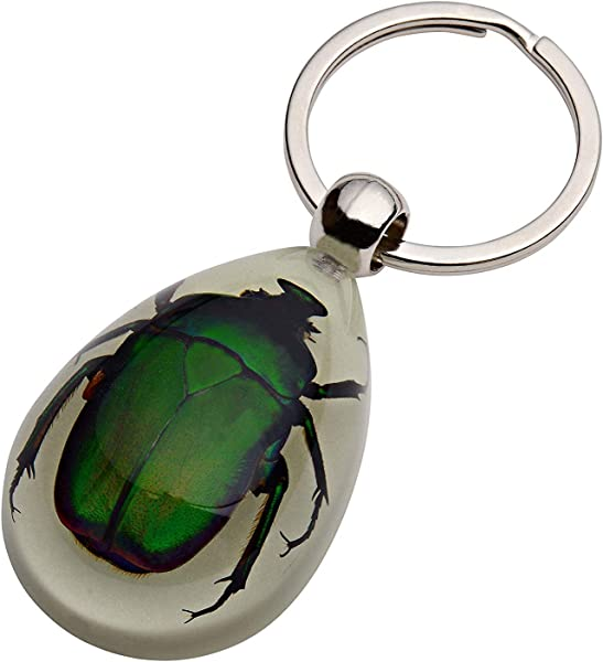 TOOGOO Glow In The Dark Real Insect Keychain Green Chafer