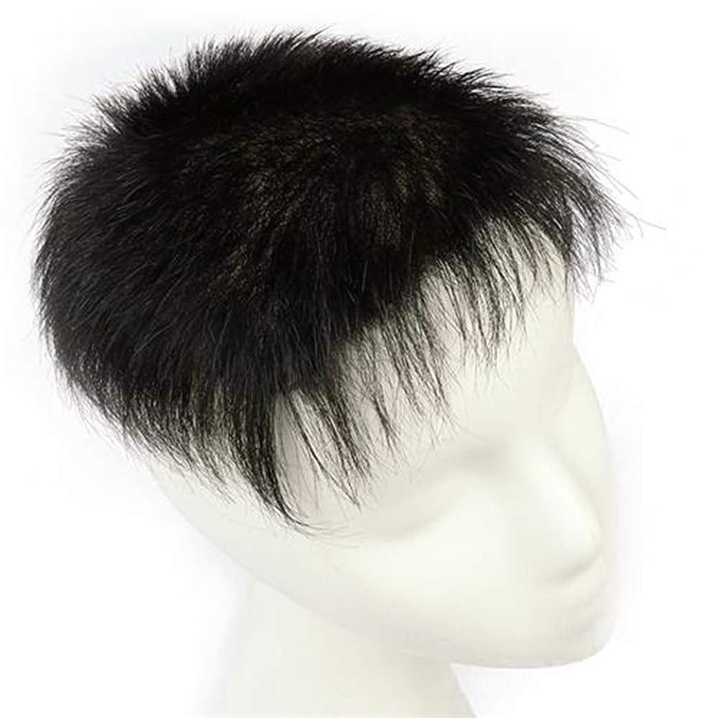 毎日誘発する正しくYESONEEP カバーのためのリアルヘアウィッグデイリードレスの男性用手織りクリップファッションウィッグ (Color : Natural black, サイズ : 16x18)
