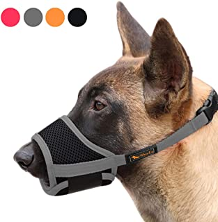 Best dog muzzle types Reviews