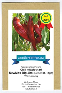 Das zur Zeit längste Chili der Welt - NewMex Big Jim - 20 Samen